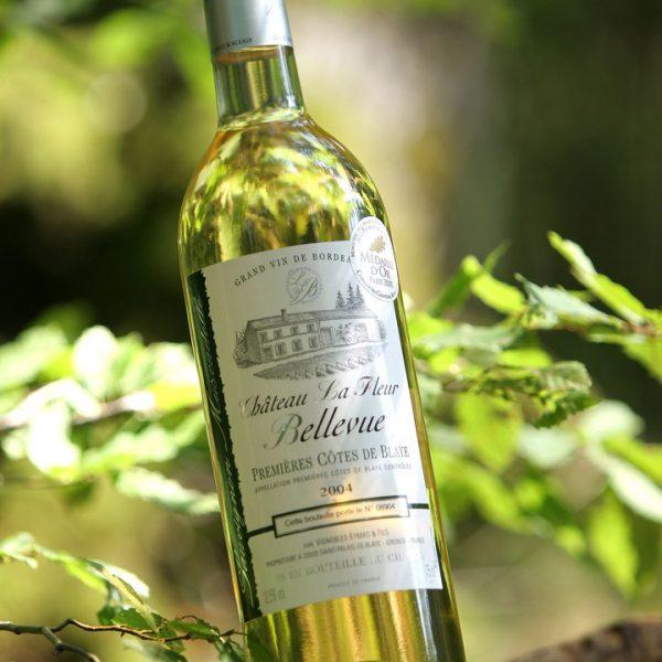 Foire aux vins - Photographe Strasbourg 67 Alsace