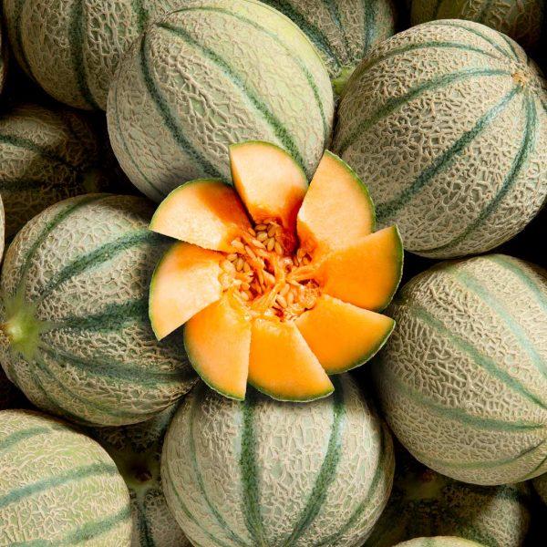 Composition de melons - Studio photo Strasbourg 67 Alsace